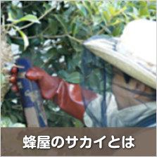 蜂屋のサカイ 蜂駆除サービスの特徴